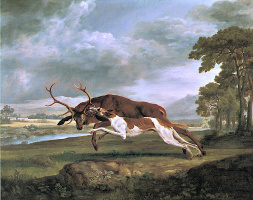 Джордж Стаббс. Борзая атакует оленя