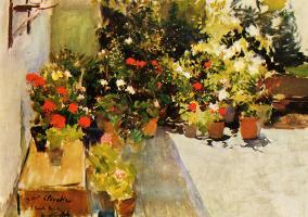 Хоакин Соролья (Соройя). Крыша с цветами