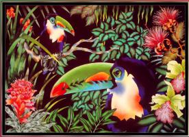 Джуди Вайс. Джуди Вайс. Тропический лес для детей 04