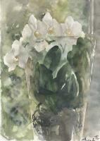 Анастасия Вячеславовна Карасева. Белая орхидея
