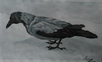 Lyudmila Kachur. Crow