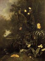 Otto Marseus van Schrik. Plants and insects