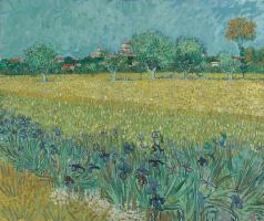 Винсент Ван Гог. Вид на Арль с ирисами