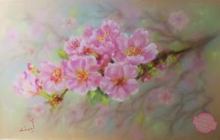 Amina. Blooming cherry