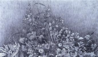 Марианна Маслова. Крымские травы