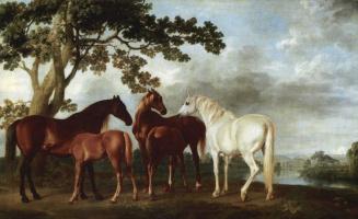 Джордж Стаббс. Кобылы и жеребята на фоне речного пейзажа