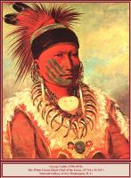 Джордж Катлин. Американский индеец