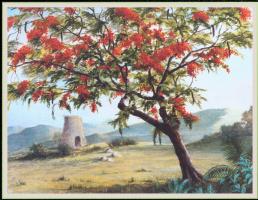 Уильям Вуд. Огненно-красный цветок