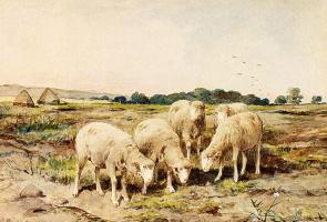 Антон Мауве. Выпас овец