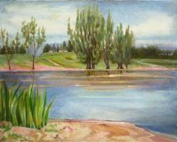 Тихий вечер на берегу реки Случь