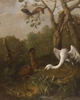 Иоган  (Иван Федорович) Фридрих Гроот. Уголок болота