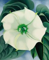 Джорджия О'Киф. Дурман (Белый цветок №1)