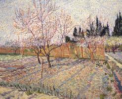Фруктовый сад с персиковыми деревьями в цвету