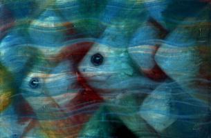 """School of fish"""