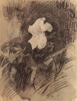Михаил Александрович Врубель. Белая азалия с листьями