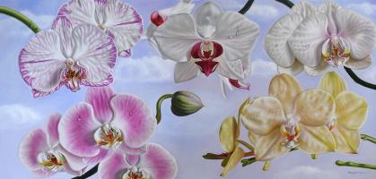 Эллери Гутьеррес. Орхидеи