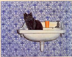 Диц. Кошачья ванна