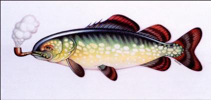 Бралдт Бралдс. Рыба
