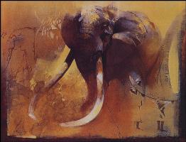 Кит Жубер. Слон