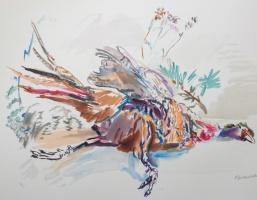 Oskar Kokoschka. Pheasant