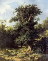 Lev Lvovich Kamenev. Old oak