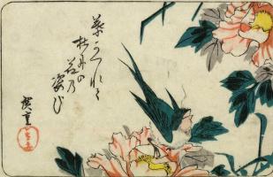 """Утагава Хиросигэ. Ласточка и розовые пионы. Серия """"Птицы и цветы"""""""