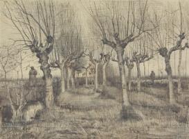 Vincent van Gogh. Trimmed birch