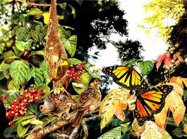 Тони Оливер. Бабочки