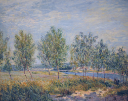 Alfred Sisley. Meadow in Bi