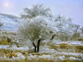 Денис Сергеевич Исмаилов. Волшебство зимы