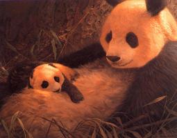 Джон Сирей-Лестер. Гигантская панда с малышом