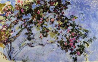 Claude Monet. Rose Bush