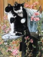 Лесли Харрисон. Два кота