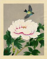 Бакуфу Оно. Птица и пион