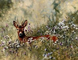 Питер Верстаппен. Природа 19