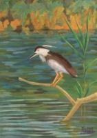 Лариса Луканева. Речная птица
