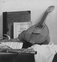 Луис Хосе Естремадойро. Мандолины и флейты