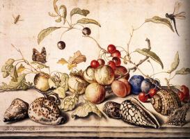 Балтазар ван дер Аст. Натюрморт с вишнями, сливами и раковинами