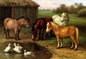 Эдгар Хант. Пони