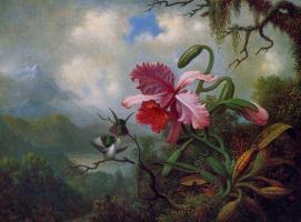 Мартин Джонсон Хед. Орхидея и колибри у горного озера