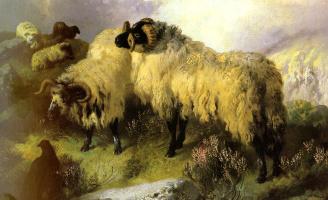 Джордж Уильям Хорлор. Овцы