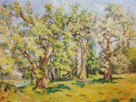 Владимир Николаевич Бабак. Могучие деревья