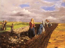 Молнар Янош Пентелеи. Урожай картофеля