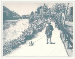 Питтсфорд. Мост 7