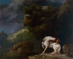 Джордж Стаббс. Лев, нападающий на лошадь