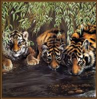 Поллианна Пикеринг. Большие кошки 07