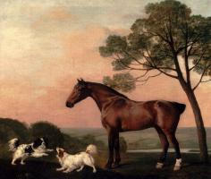 Джордж Стаббс. Жеребец и две собаки