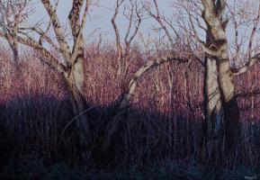 Иван Степанович Марчук. На струнах леса Солнце играет (На струнах лісу сонце виграє)