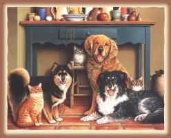 Лоуэлл Эрреро. Коты и собаки