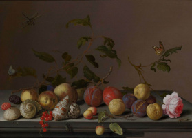 Baltazar van der Ast. Still life with fruit, shells and a rose on a table